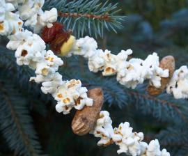popcorn_string